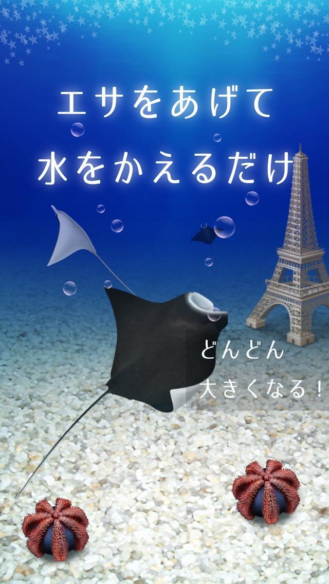 美しいマンタ育成ゲーム-無料の水族館育成ゲームアプリ-のスクリーンショット_2