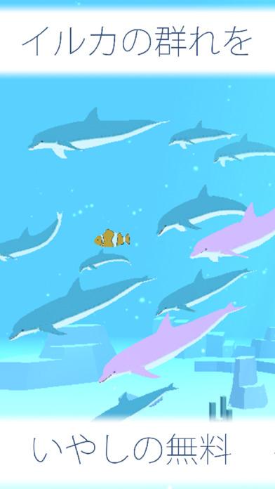 まったり いるか育成げーむ無料 - のんびり癒しのイルカ育成ゲームのスクリーンショット_1