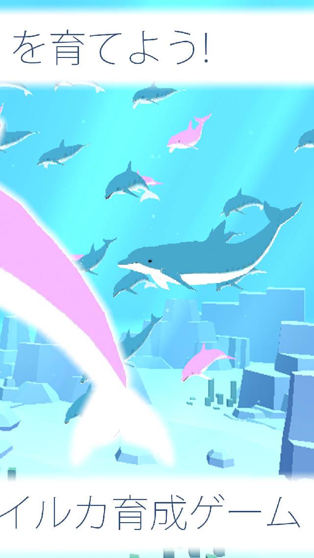 まったりイルカ育成ゲーム - 癒しのイルカのゲームのスクリーンショット_2