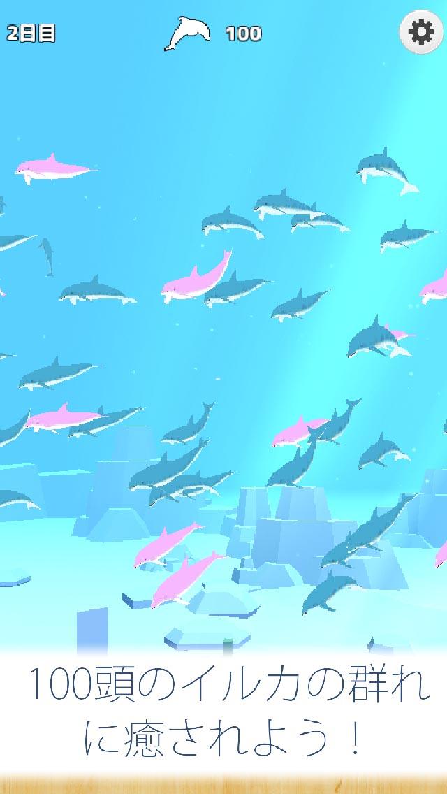 まったりイルカ育成ゲーム - 癒しのイルカのゲームのスクリーンショット_4