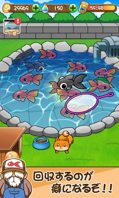 金魚コレクション - 金魚すくい無料ゲームのスクリーンショット_3