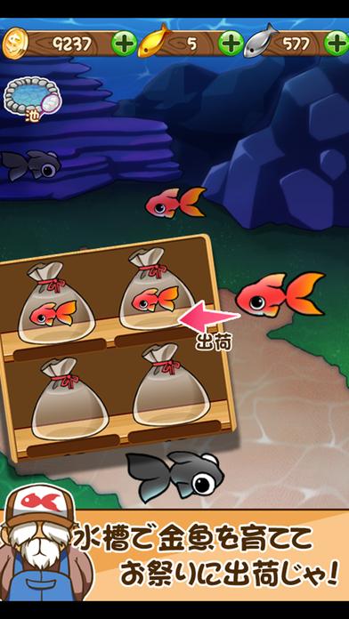 金魚コレクション - 金魚すくい無料ゲームのスクリーンショット_4