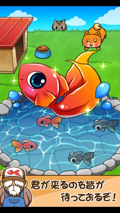 金魚コレクション - 金魚すくい無料ゲームのスクリーンショット_5