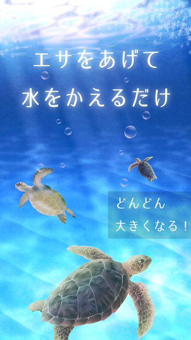 ウミガメ育成ゲーム(癒しのリラクゼーション編)のスクリーンショット_2