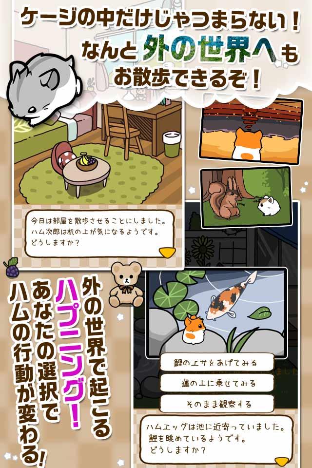 ハムスターストーリー 【無料で遊べるハムスター育成ゲーム】のスクリーンショット_2