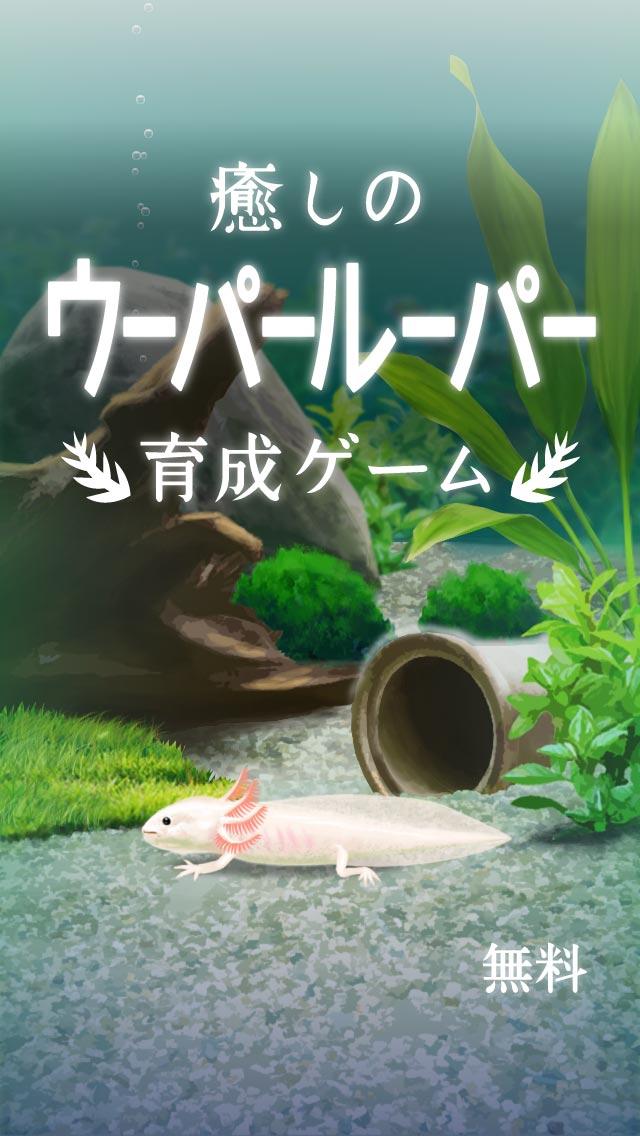 癒しのウーパールーパー育成ゲームのスクリーンショット_1