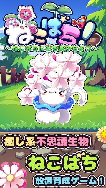 ねこばち!~ねこばちに花を咲かせよう~のスクリーンショット_1